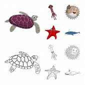 Vector Design Of Sea And Animal Icon. Collection Of Sea And Marine Vector Icon For Stock. poster