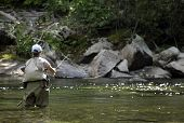 stock photo of fly rod  - Fly fishing on the Upper Boulder river in Montana