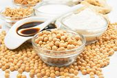 stock photo of soybean milk  - Soybean and soy products used in asian an vegetarian cuisine - JPG