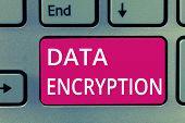 Conceptual Hand Writing Showing Data Encryption. Business Photo Showcasing Symmetric Key Algorithm F poster