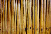 old varnished bamboo background