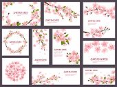 Sakura Vector Blossom Cherry Greeting Cards With Spring Pink Blooming Flowers Illustration Japanese  poster