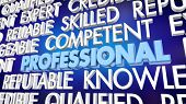 Professional Expert Reliable Reputation Word Collage 3d Illustration poster