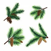 Fir Branch. Christmas Tree Branches With Cones. Pine Xmas Vector Decoration. Illustration Of Fir-con poster
