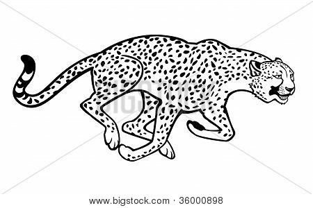 Running Cheetah Black And WhiteBaby Cheetah Clipart Black And White
