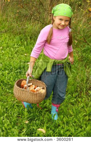 Young Girl Picking Mushrooms