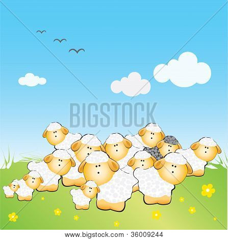 The Herd Of Sheeps With One Black Sheep On The Grass