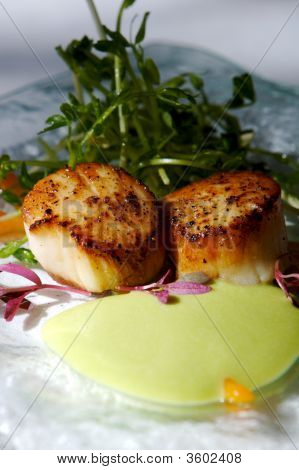 Gourmet Seared Scallops With Garnishes