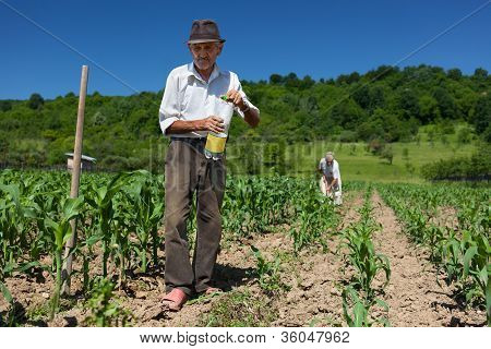 Old Rural Worker Drinking Water Outdoor