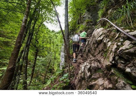 Family Of Hikers