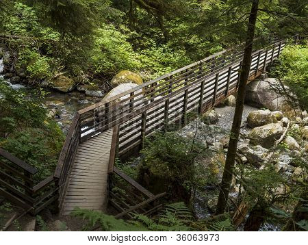 Bridge Leading Journey Into Woods