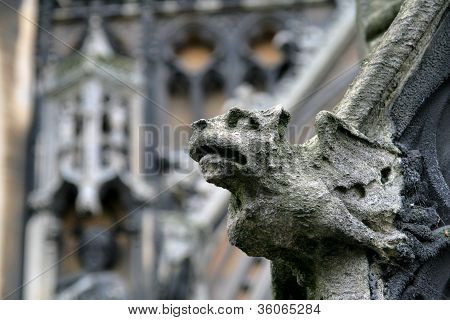 Cambridge Gargoyle