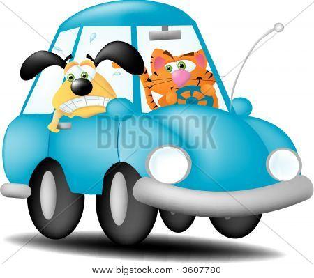 Cat Driving Dog