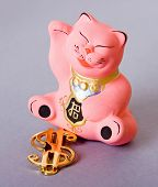 foto of obeah  - maneki neko cat with golden dollar sign - JPG
