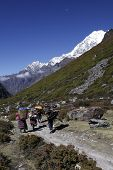 stock photo of sherpa  - Locals carry wood and supplies in the mountains of Nepal - JPG
