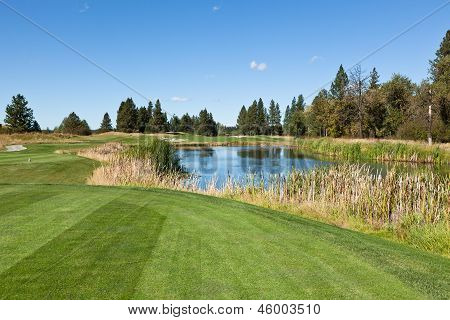 Tee Off Over Pond