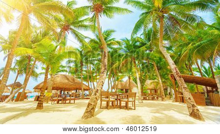 Luxury beach resort on Playa del Carmen, romantic honeymoon, beautiful bungalow on seaboard, fresh green palm tree, cozy cafe on coastland