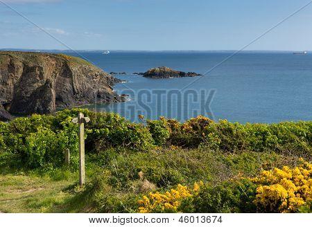 Caerfai Bay St Brides Bay Pembrokeshire Wales