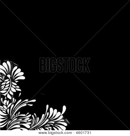 White Floral Black Background