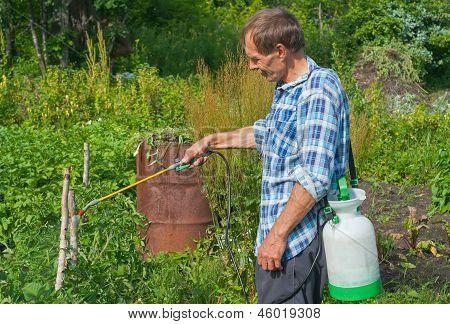 Gardener With Sprinkler