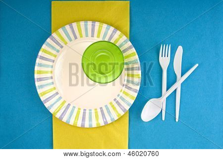 Picnic Disposable Dishware Setting