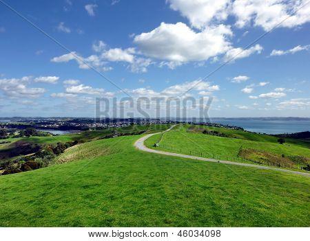 Grassland hills near Auckland