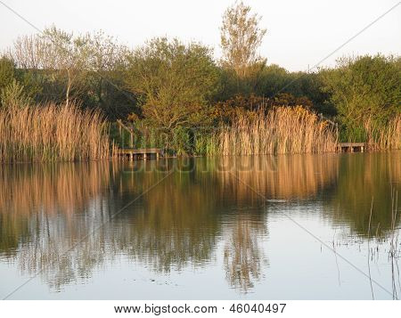 Lake Landscape With Fishing Pontoon