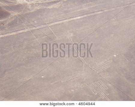 Nazca Lines, The Hummingbird