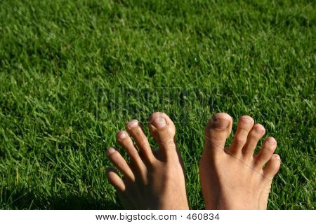 Grass Feet Series