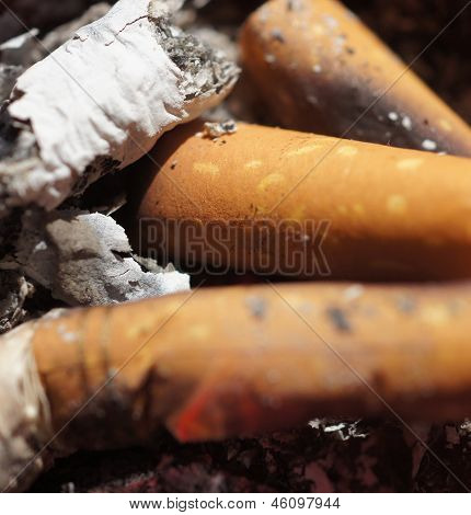 Close up shots of cigarette ashes