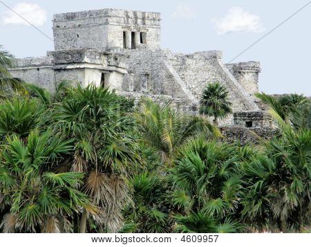 Mayan Temple Of Tulum