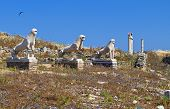 Delos island in Greece
