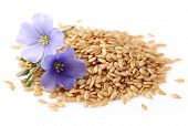 stock photo of flax plant  - Flax seeds with flowers - JPG