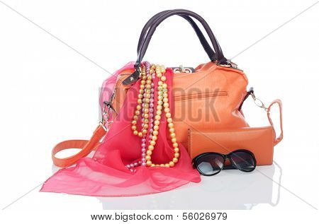 Woman bag with accessories