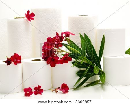 Aromatic Paper Goodies