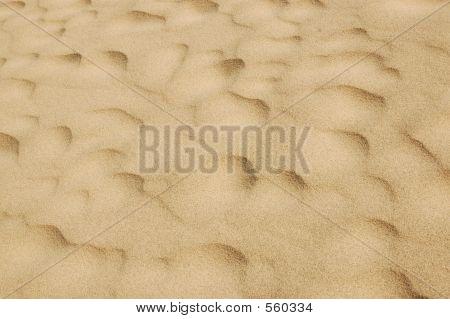 Sand Sculputure