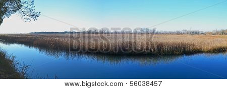 Marshland river panorama