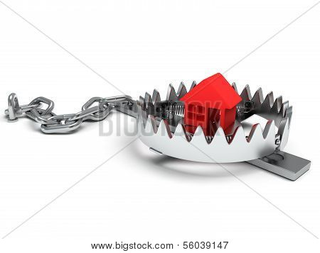 Metal animal trap open with red home