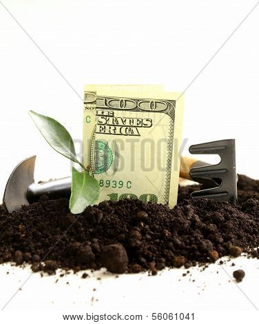 American dollars grow from the ground - the concept of profit and business development