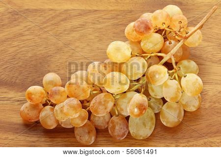 Unique Golden yellow White wine Grapes from Sudtirol (South Tyrol, Italy)