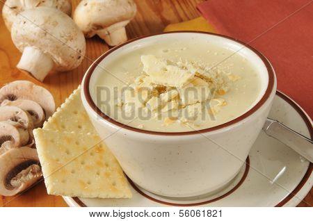 Cream Of Mmushroom Soup