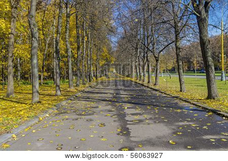 Parkway In October.