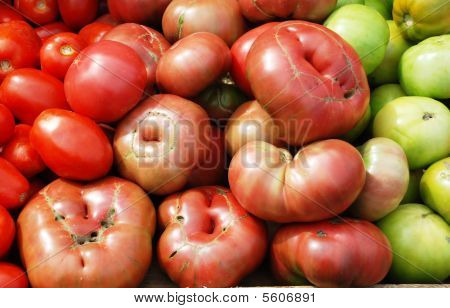 Green and red tomatoes.
