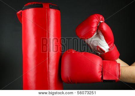 Box training and punching bag, isolated on black
