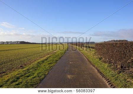Minster Way In Winter
