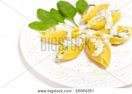 Shell pasta