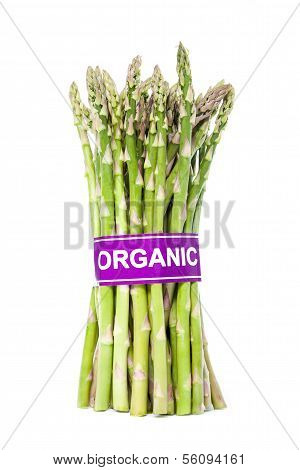 Certified Organic Asparagus