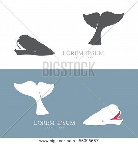 Vektor-Bild eines Wals