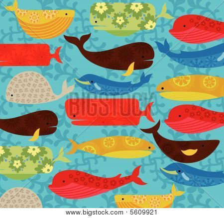 Cartoon Whale Pattern