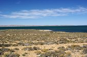 stock photo of pampa  - Lake in the pampas of Patagonia - JPG